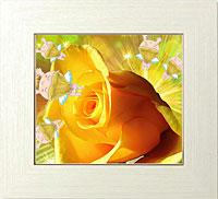 天辺の祝福のための黄色い薔薇